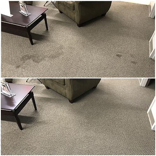 Carpet-spot-pics